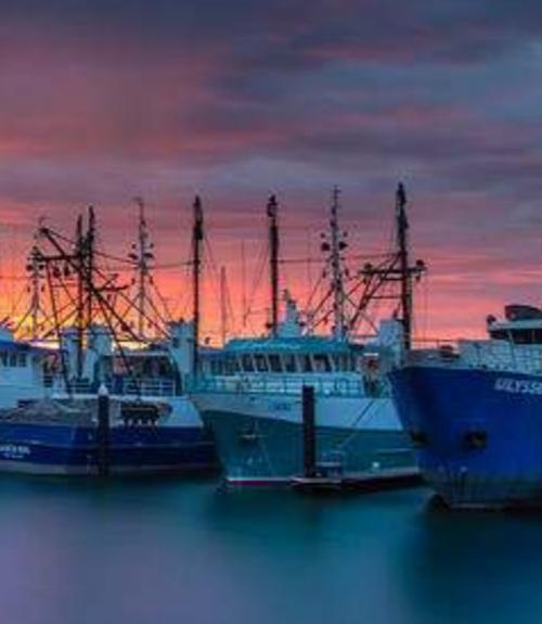 Australian Council of Prawn Fisheries