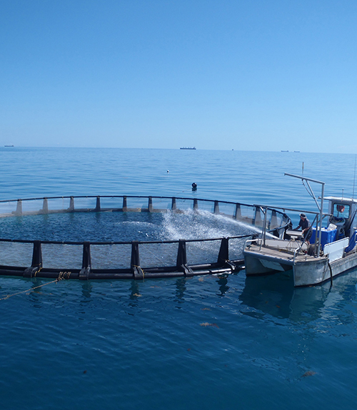 Aquaculture Council of WA