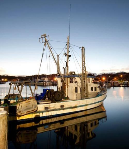 NSW Fishermens Cooperative LTD