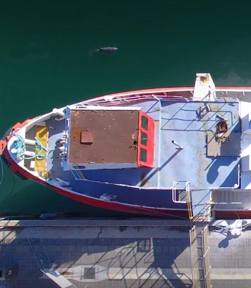 NSW Fishing Industry Training Committee Ltd
