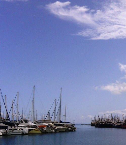 Queensland Seafood Industry Association