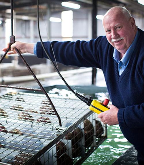 Tasmanian Seafoods